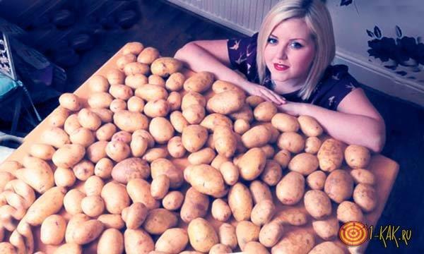 Еврейский сонник к чему снится картошка во сне?