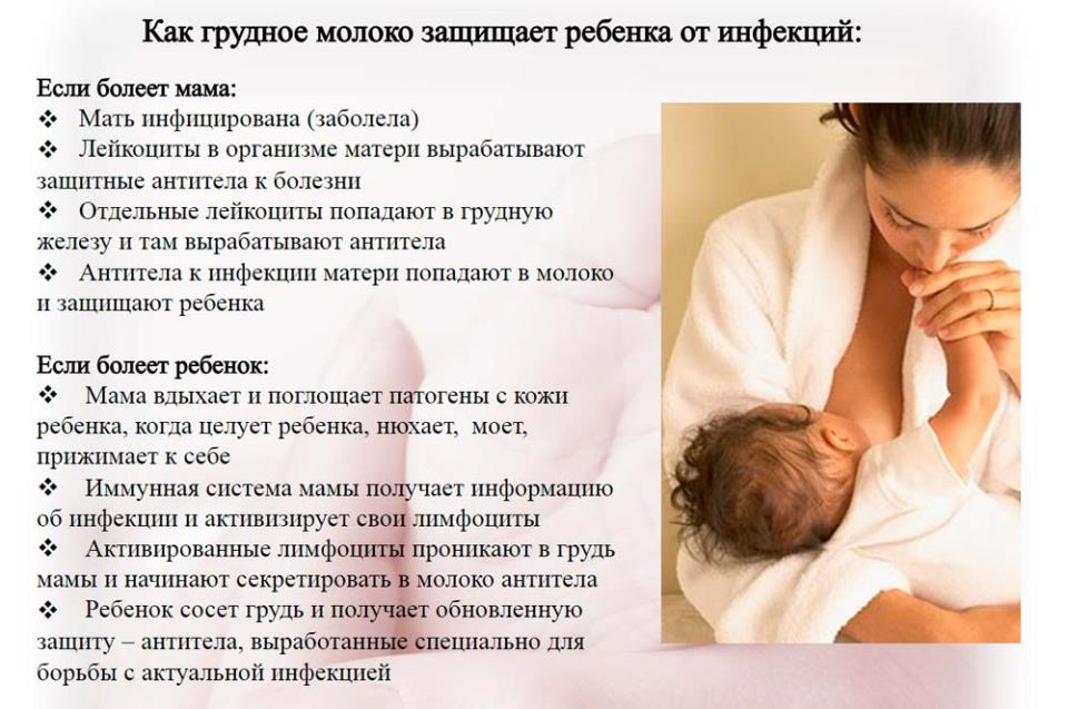 К чему снится грудное молоко беременной женщине