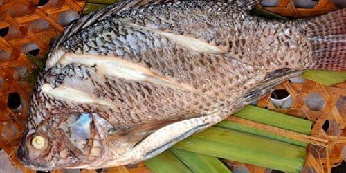 вкусная вареная рыба