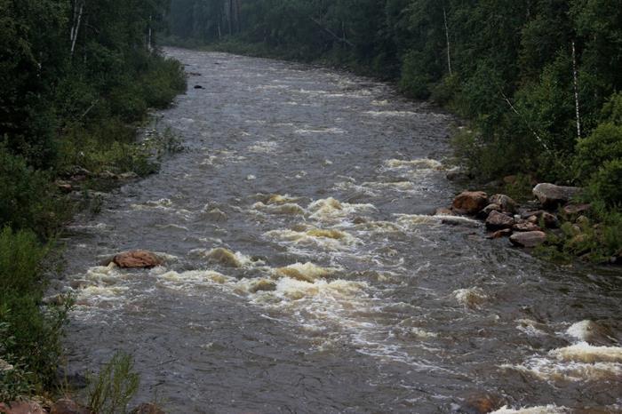 К чему снится вода: грязная, чистая, мутная, прозрачная