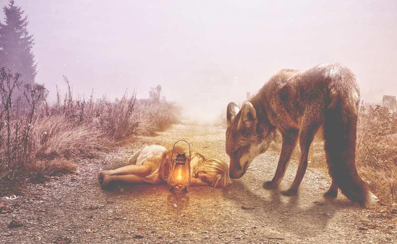 К чему снятся собаки и волки