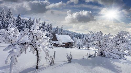 красивый снежный пейзаж