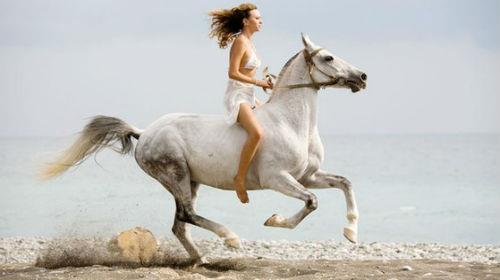 скакать на лошади во сне