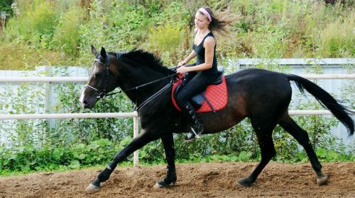 ездить на лошади
