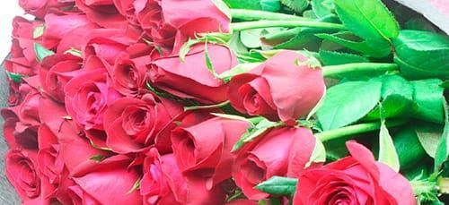 букет розовых роз во сне
