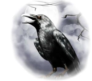 сонник - черная ворона