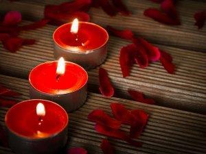 Мандариновый сад во сне - к романтическому свиданию