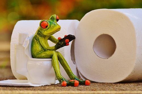 k-chemu-snitsya-xodit-v-tualet-4