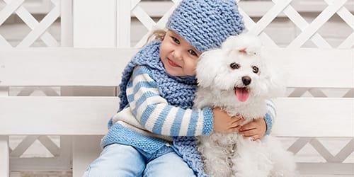 к чему снится белый щенок