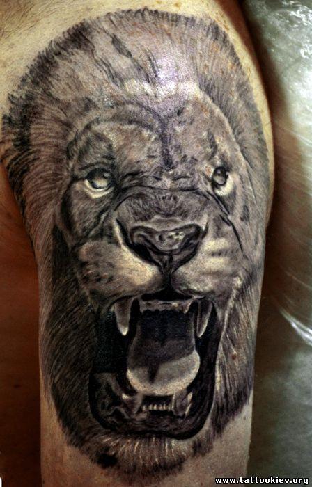 Лев татуировка, львица
