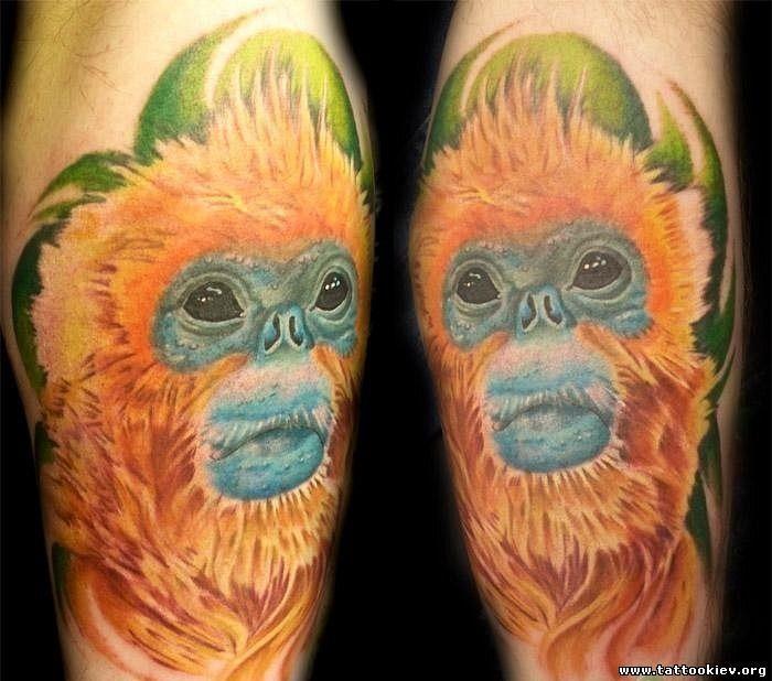 Обезьяна тату шимпанзе. Тату три обезьяны «не вижу зла, не говорю зла, не слышу зла»