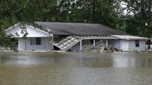 много воды вокруг потоп